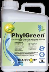 Phylgreen Algas